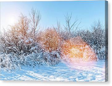 Sunny Winter Day Canvas Prints Page 21 Of 35 Fine Art America