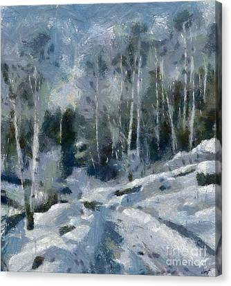 Featured Canvas Print - Winter Path by Dragica Micki Fortuna