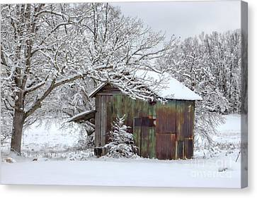 Winter Patina Canvas Print by Benanne Stiens