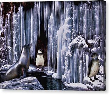 Winter Playground Canvas Print by Pennie  McCracken