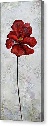 Winter Poppy I Canvas Print by Shadia Derbyshire