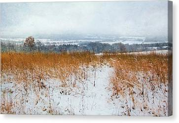 Winter Prairie At Retzer Nature Center  Canvas Print by Jennifer Rondinelli Reilly - Fine Art Photography