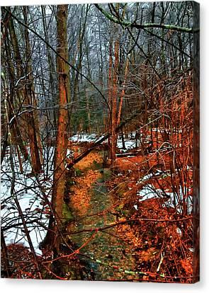 Winter Recedes Canvas Print by Michael Putnam