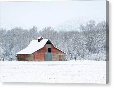 Winter Red Barn Canvas Print by Mike Dawson