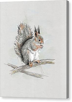 Winter Red Squirrel Canvas Print