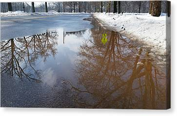 Winter Reflection Canvas Print by Erin Cadigan