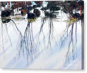 Winter Reflections Canvas Print by Judi Bagwell
