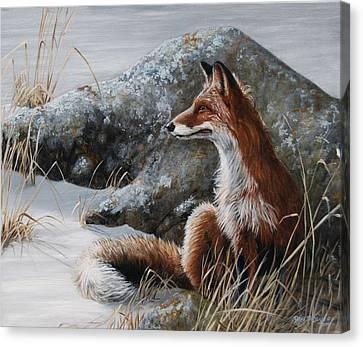 Winter Respite Canvas Print by Rob Dreyer