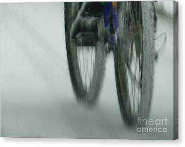 Winter Ride Canvas Print by Linda Shafer