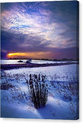 Winter Rising Canvas Print by Phil Koch