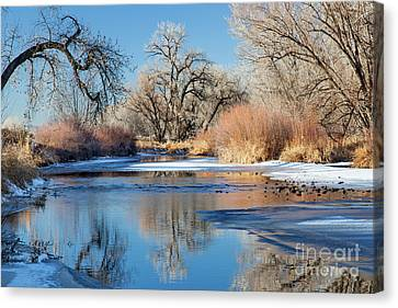 Winter River In Colorado Canvas Print