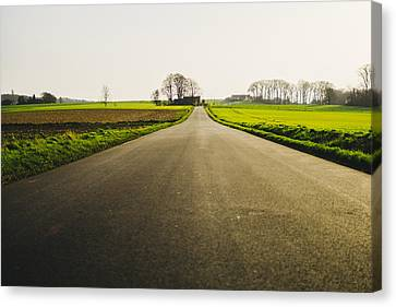 Winter Road Ground Level Canvas Print by Pati Photography