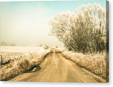 Winter Road Wonderland Canvas Print
