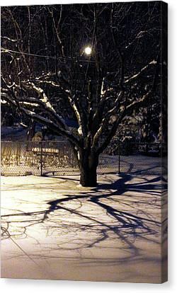 Winter Romace Canvas Print