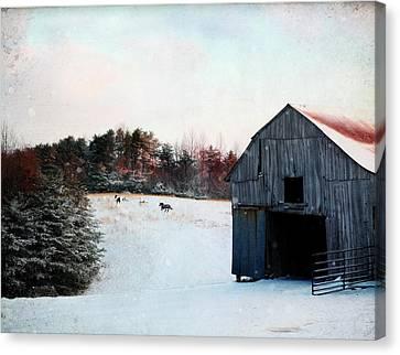 Winter Run Canvas Print by Stephanie Frey