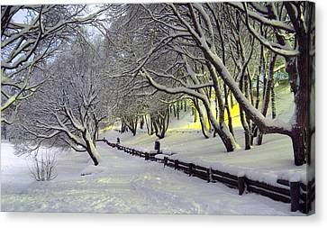 Canvas Print featuring the photograph Winter Scene 1 by Sami Tiainen