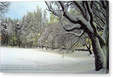 Canvas Print featuring the photograph Winter Scene 3 by Sami Tiainen