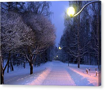 Canvas Print featuring the photograph Winter Scene 4 by Sami Tiainen