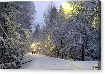 Canvas Print featuring the photograph Winter Scene 5 by Sami Tiainen