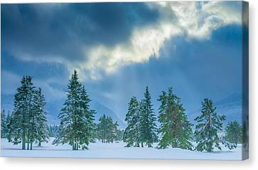 Snow Covered Trees Canvas Print - Winter Scene - New Hampshire by Joseph Smith