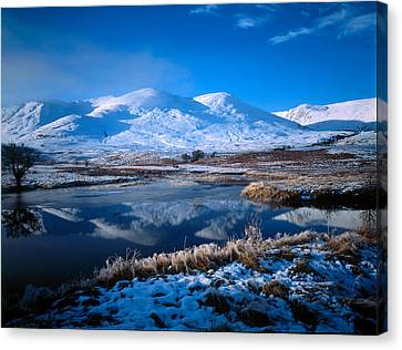 Winter Scene Strathmashie Highlands Canvas Print by Panoramic Images