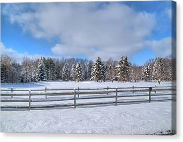 Canvas Print featuring the photograph Winter Scenery 14589 by Guy Whiteley