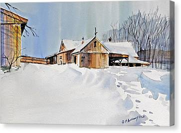Winter Shadows Canvas Print by P Anthony Visco