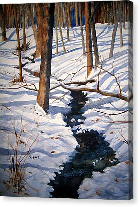 Winter Shadows Canvas Print by Shirley Braithwaite Hunt