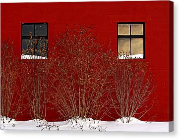 Canvas Print featuring the photograph Winter Sky Reflection by Don Nieman