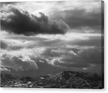 Black Canvas Print - Winter Sky by Rona Black