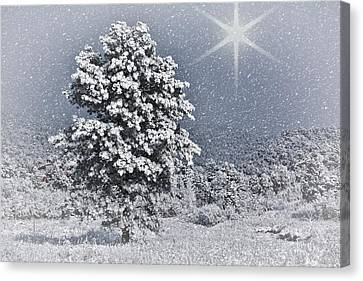 Canvas Print featuring the photograph Winter Solitude 2 by Diane Alexander