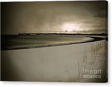 Canvas Print featuring the photograph Winter Solitude by Alana Ranney