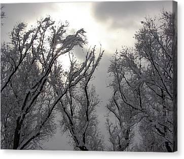 Winter Solstice Utah Canvas Print