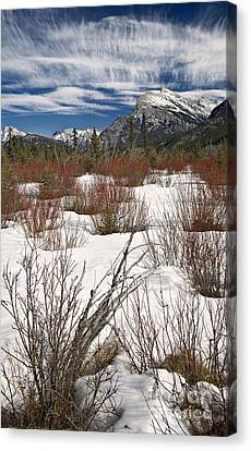 Dogwood Lake Canvas Print - Winter Spice by Royce Howland
