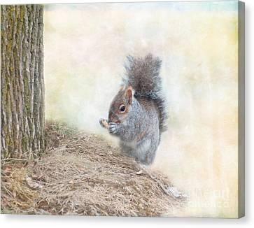 Kathy Rinker Canvas Print - Winter Squirrel by Kathleen Rinker