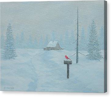 Winter Storm Carter Canvas Print by John Carter