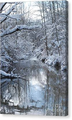 Canvas Print featuring the photograph Winter Stream by Lila Fisher-Wenzel
