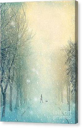 Winter Stroll Canvas Print by Svetlana Sewell