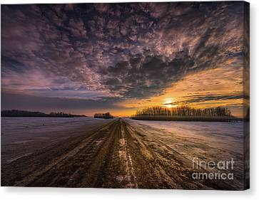 Winter Sublime Canvas Print by Ian McGregor