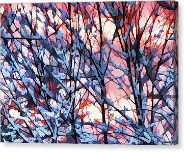 Winter Sunrise Canvas Print by Betsy Zimmerli