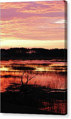 Canvas Print featuring the photograph Winter Sunrise by Margaret Palmer