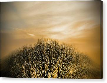 Winter Sunset Canvas Print by Charles Ables