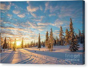 Canvas Print featuring the photograph Winter Sunset by Delphimages Photo Creations