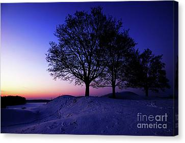 Winter Sunset Canvas Print by Hannes Cmarits