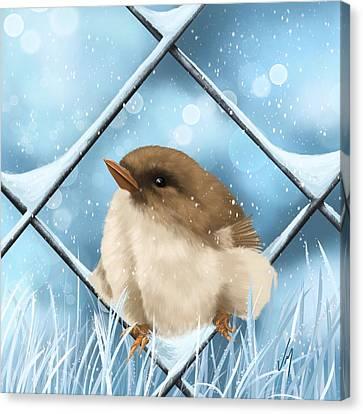 Winter Sweetness  Canvas Print by Veronica Minozzi