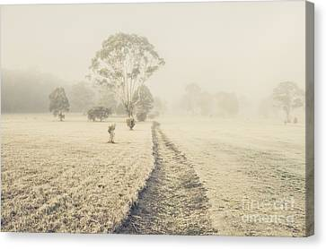 Winter Tasmania Background Canvas Print by Jorgo Photography - Wall Art Gallery