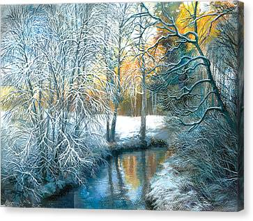 Winter The Pond Canvas Print