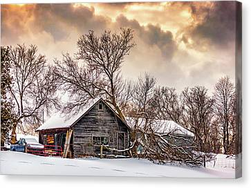 Winter Thoughts 2 Canvas Print