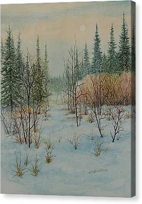 Winter Trail Alberta Canvas Print