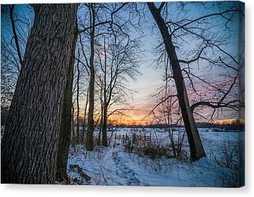 Winter Trails Canvas Print